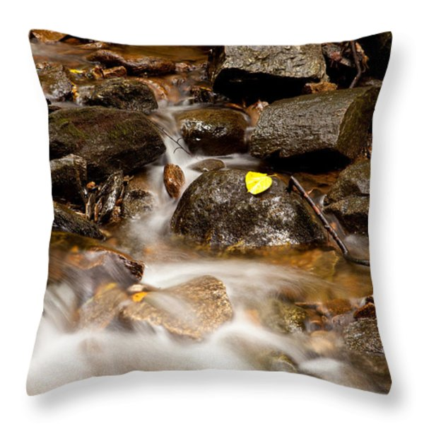 As It Runs Throw Pillow by Karol Livote