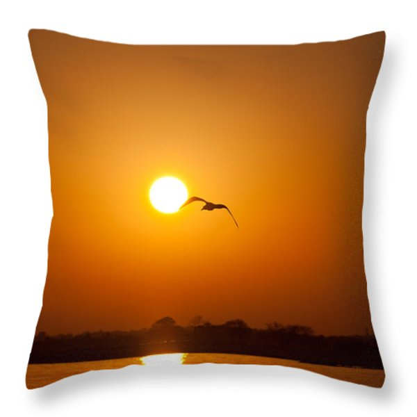 As The Gull Glides Throw Pillow by Karol Livote