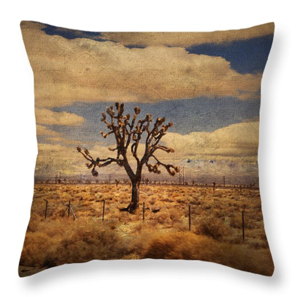As We Go Down Life's Lonesome Highway Throw Pillow by Laurie Search