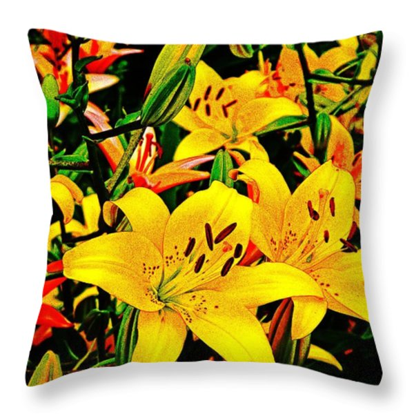 Asiatics In May  Throw Pillow by Chris Berry