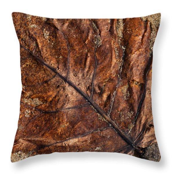 Atres 1 Throw Pillow by Karol  Livote
