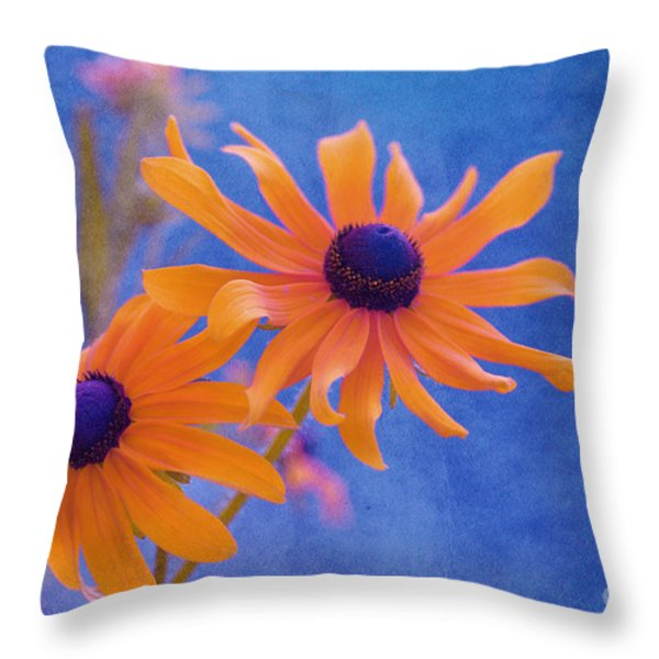 Attachement - S11at01d Throw Pillow by Variance Collections