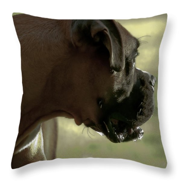 Attention Is Elsewhere...as Usual Throw Pillow by DigiArt Diaries by Vicky B Fuller