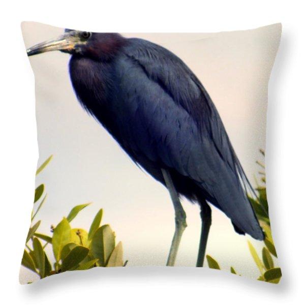 Audubon Blue Throw Pillow by KAREN WILES