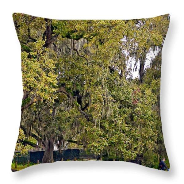 Audubon Park 2 Throw Pillow by Steve Harrington