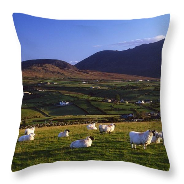 Aughrim Hill, Mourne Mountains, County Throw Pillow by Gareth McCormack