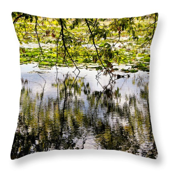 August Reflections Throw Pillow by Rachel Cohen