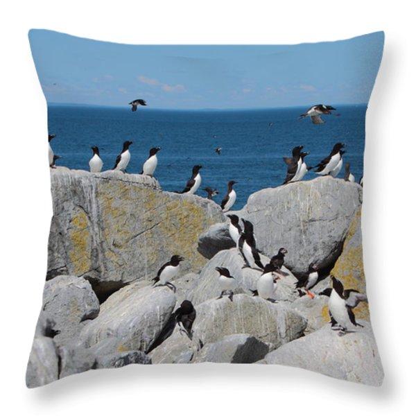 Auk Island Throw Pillow by Bruce J Robinson