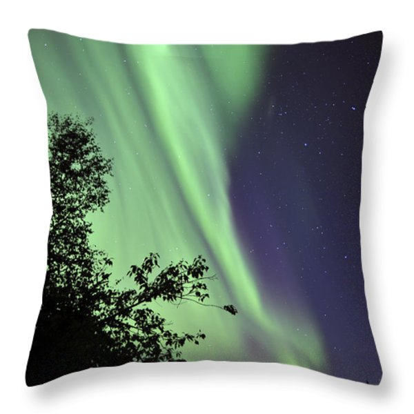 Aurora Borealis Above The Trees Throw Pillow by Jiri Hermann