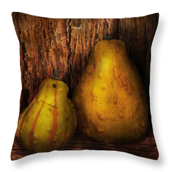 Autumn - Gourd - A pair of squash  Throw Pillow by Mike Savad