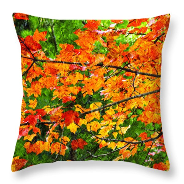 Autumn Abstract Painterly Throw Pillow by Andee Design