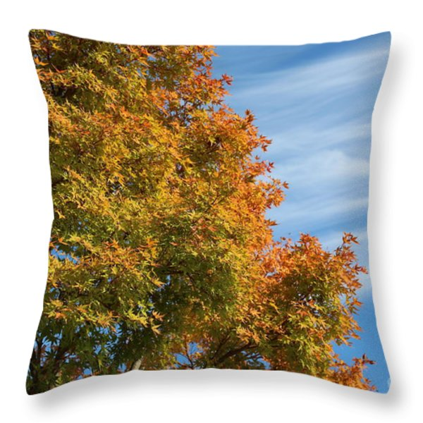 Autumn Anticipation Throw Pillow by Carol Groenen