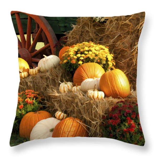 Autumn Bounty Throw Pillow by Kathy Clark