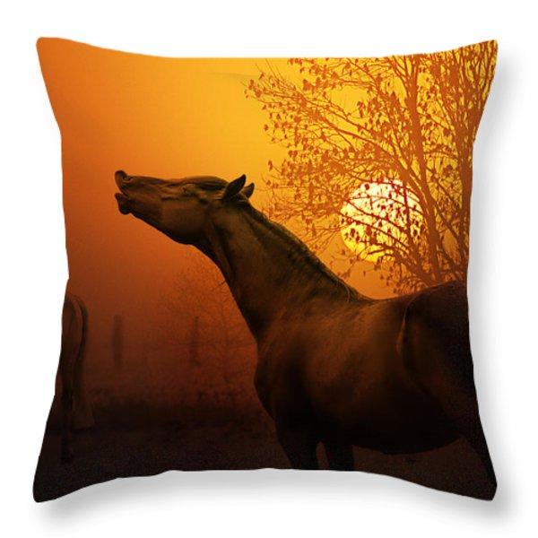 autumn breeze Throw Pillow by Joachim G Pinkawa