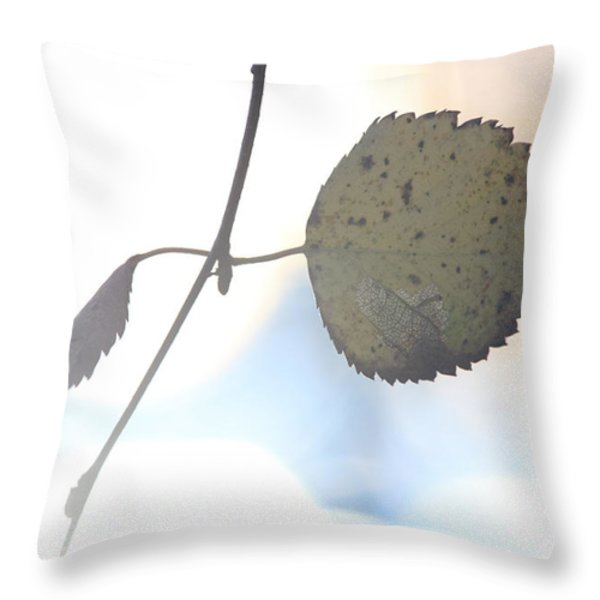 Autumn Colored Birch Leaf Throw Pillow by Intensivelight