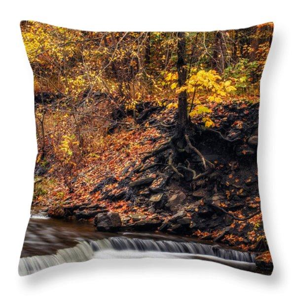 Autumn Flow Throw Pillow by Mark Papke