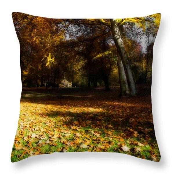 Autumn Throw Pillow by Hannes Cmarits