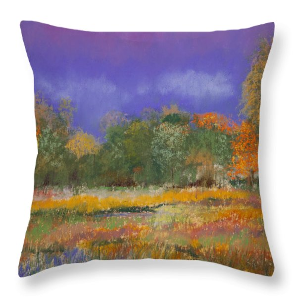 Autumn in Nisqually Throw Pillow by David Patterson