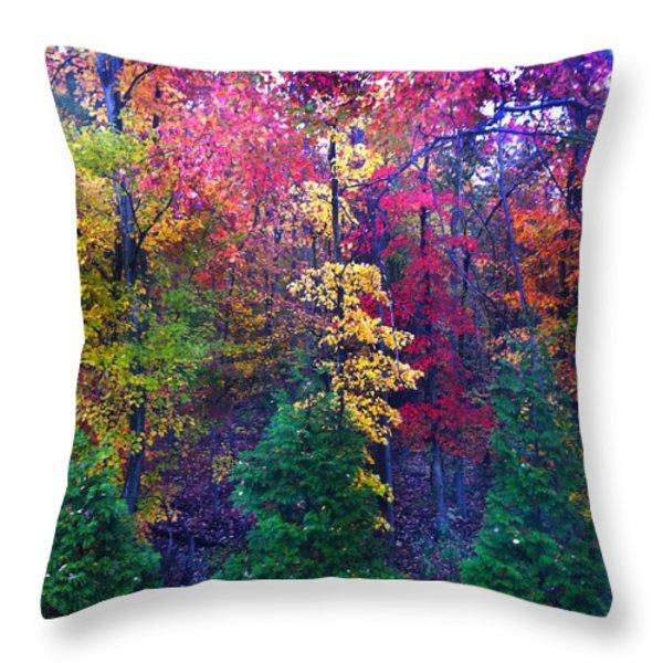 Autumn in Virginia Throw Pillow by Nabila Khanam