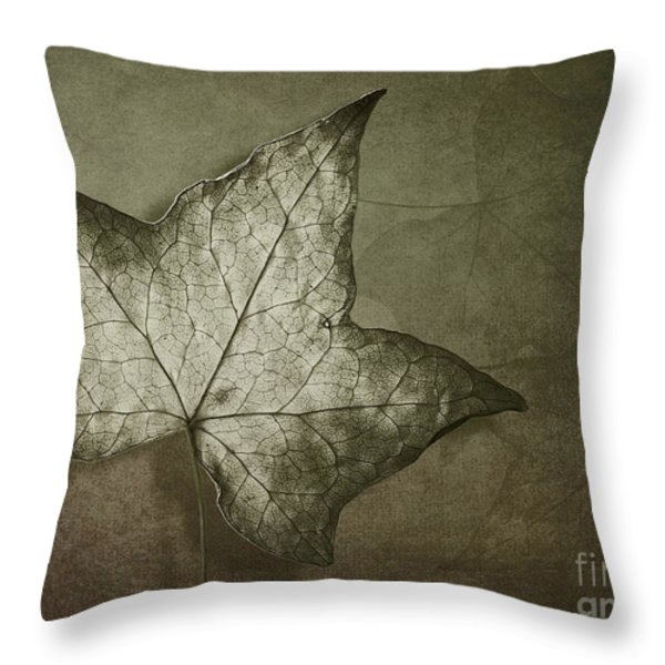 Autumn Throw Pillow by Jan Pudney