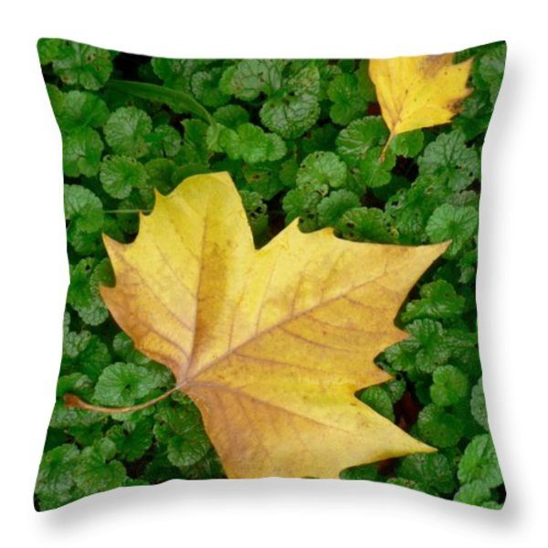 Autumn Just Began Throw Pillow by Philippe Taka