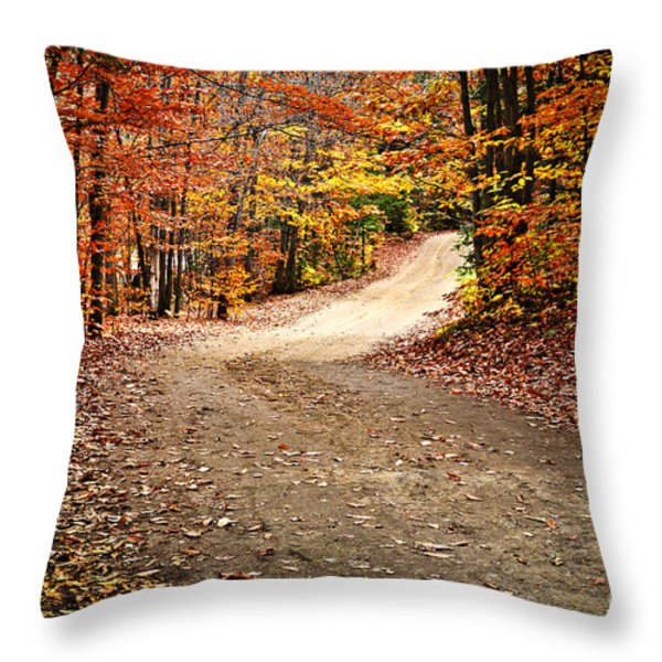 Autumn landscape with a path Throw Pillow by Elena Elisseeva