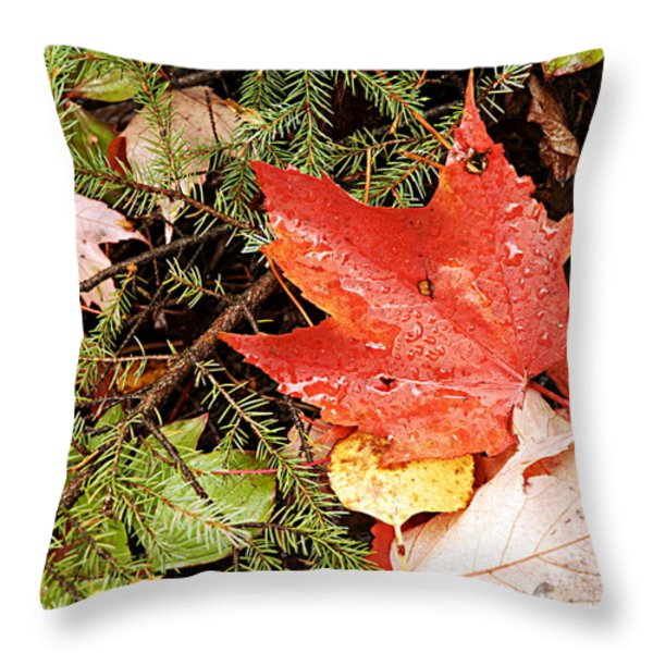 Autumn Leaves Throw Pillow by Larry Ricker