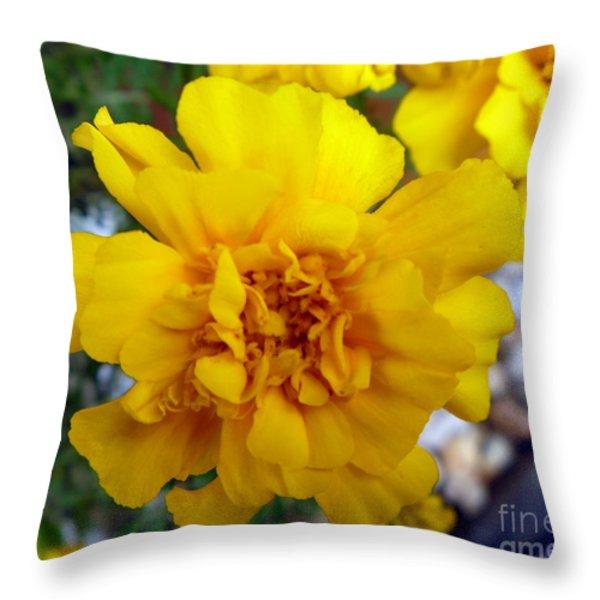 Autumn Marigold 1 Throw Pillow by Alys Caviness-Gober