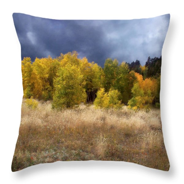 Autumn Meadow Throw Pillow by Carol Cavalaris