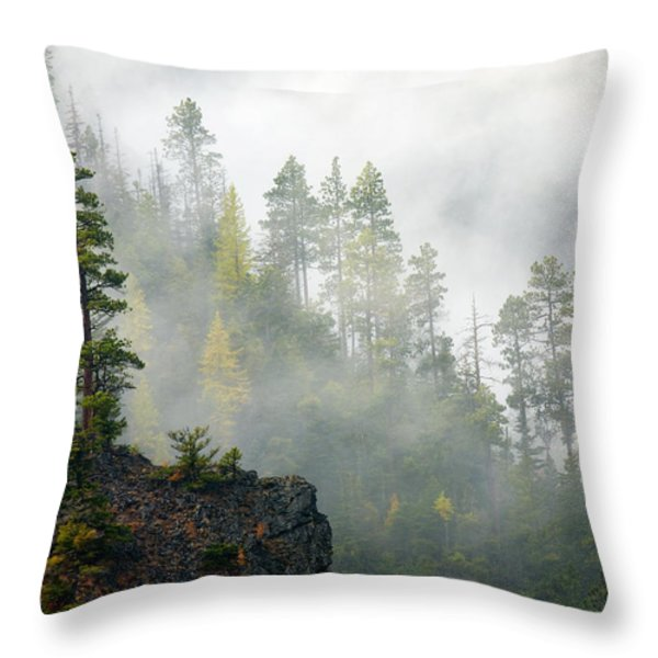 Autumn Mist Throw Pillow by Mike  Dawson