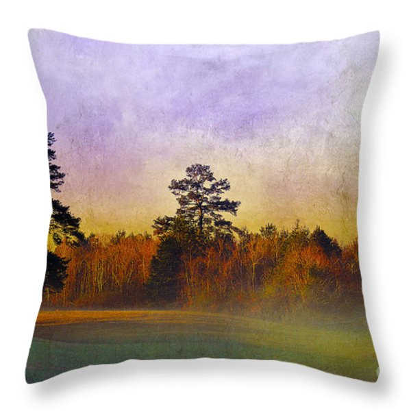 Autumn Morning Mist Throw Pillow by Judi Bagwell