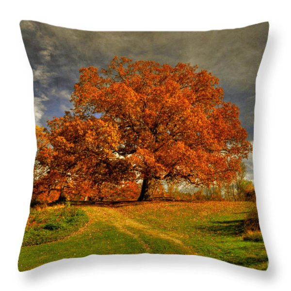 Autumn Picnic On The Hill Throw Pillow by Lois Bryan