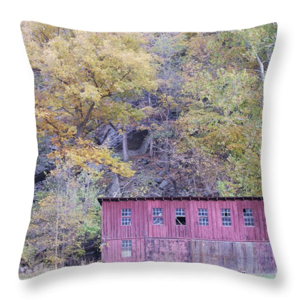 Autumn Poultry Barn Throw Pillow by Randy Bodkins