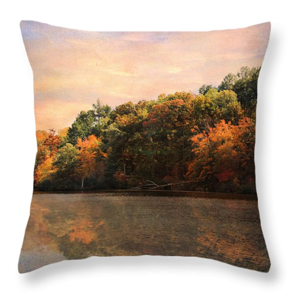 Autumn Reflections 2 Throw Pillow by Jai Johnson