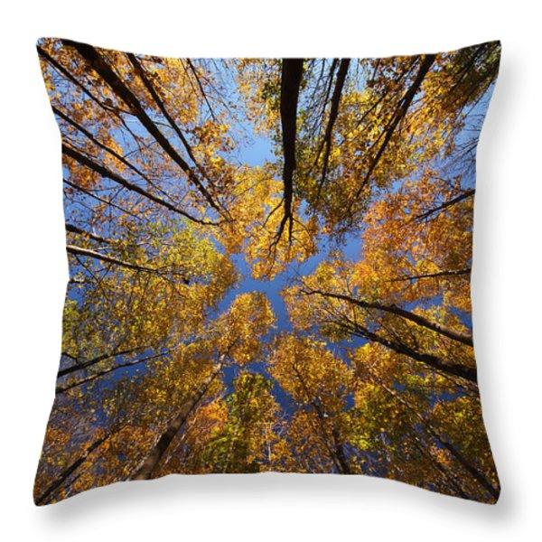 Autumn Sky Throw Pillow by Mircea Costina Photography