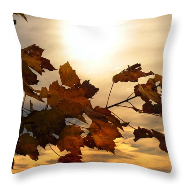 Autumn Splendor Throw Pillow by Bill Cannon