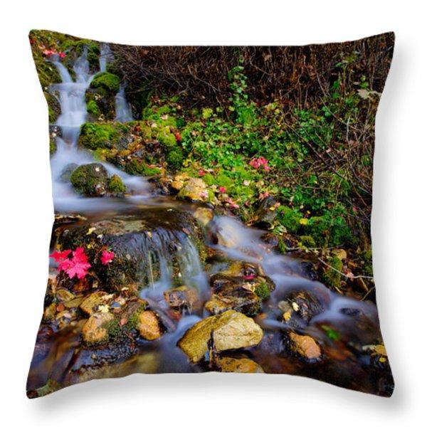 Autumn Stream Throw Pillow by Chad Dutson