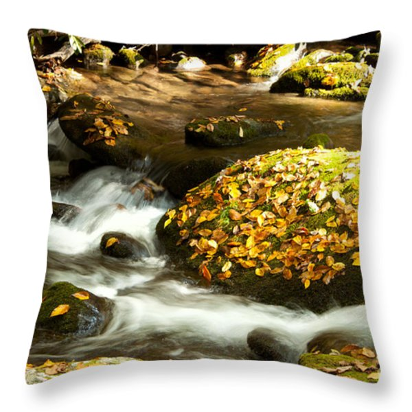 Autumn Stream Throw Pillow by Lena Auxier