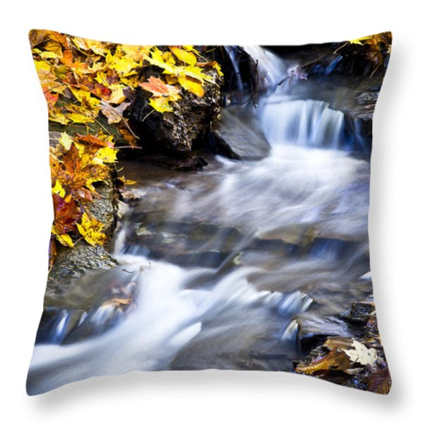 Autumn Stream No 2 Throw Pillow by Kamil Swiatek