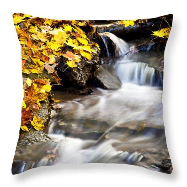 Autumn Stream No 3 Throw Pillow by Kamil Swiatek