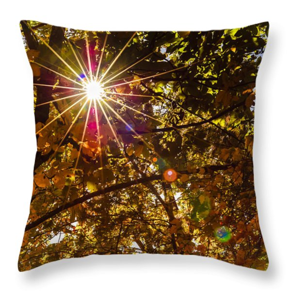 Autumn Sunburst Throw Pillow by Carolyn Marshall