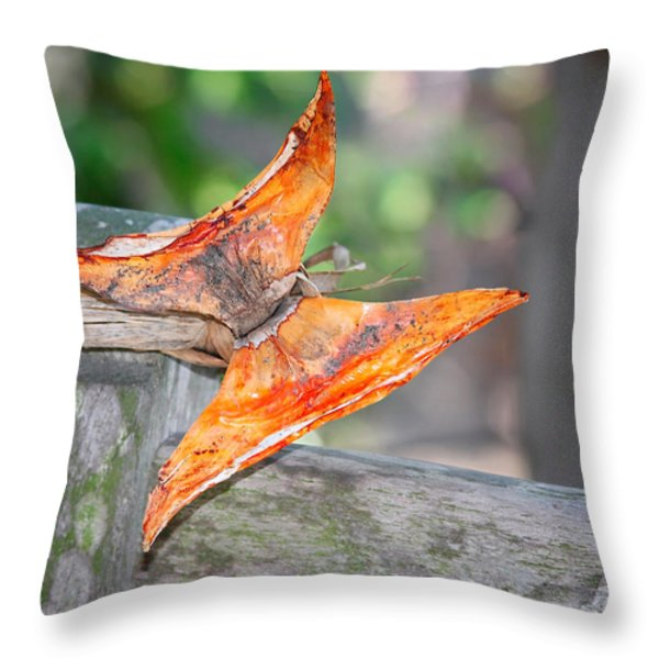 Autumn - The Year's Loveliest Smile Throw Pillow by Christine Till
