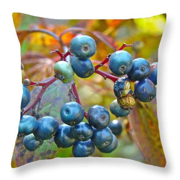 Autumn Viburnum Berries Series #4 Throw Pillow by Mother Nature