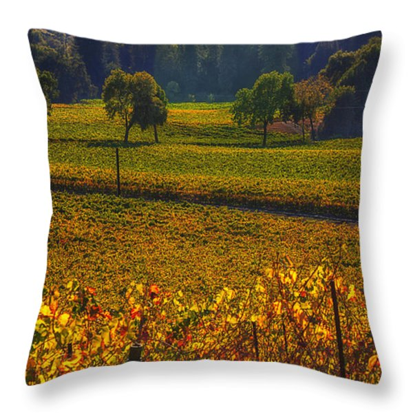 Autumn Vineyards Throw Pillow by Garry Gay