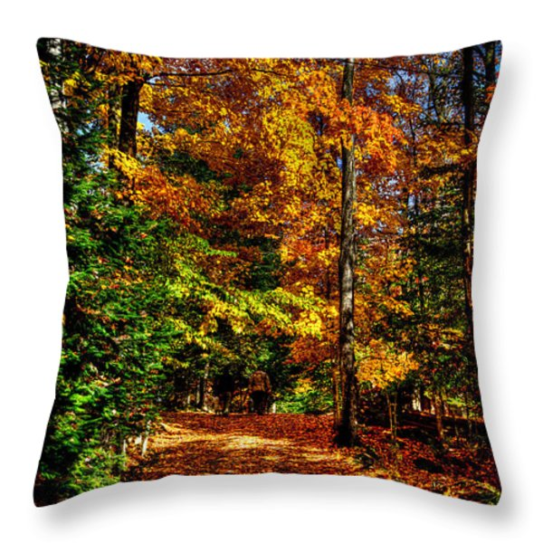 Autumn Walk Throw Pillow by David Patterson