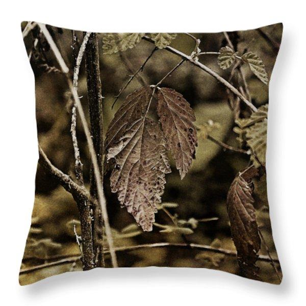 Autumn Whispers Throw Pillow by Bonnie Bruno