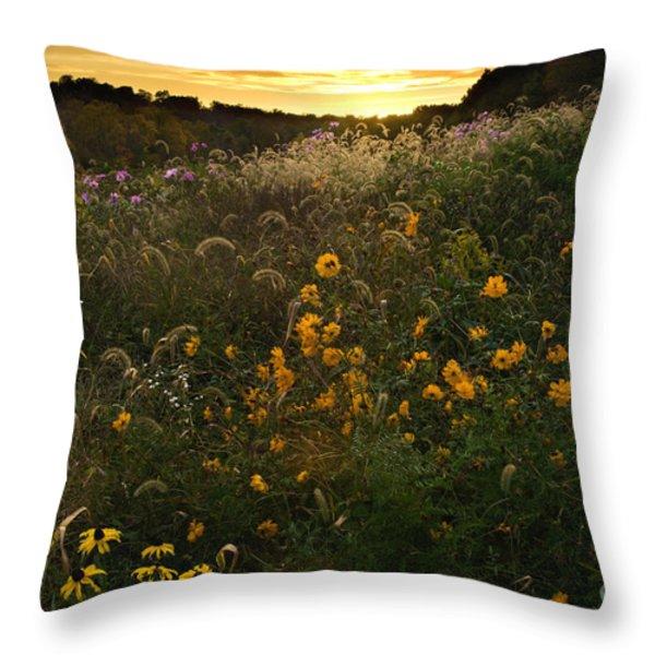 Autumn Wildflower Sunset - D007757 Throw Pillow by Daniel Dempster
