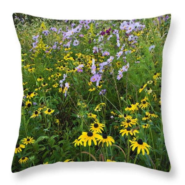 Autumn Wildflowers - D007762 Throw Pillow by Daniel Dempster