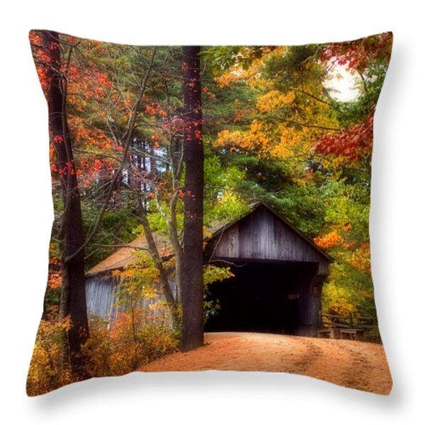 Autumn Wonder Throw Pillow by Joann Vitali