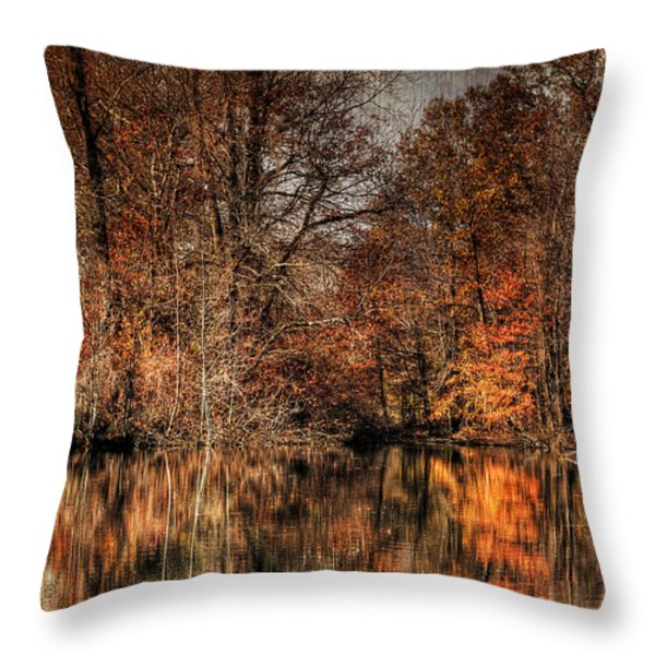 Autumn's End Throw Pillow by Paul Ward